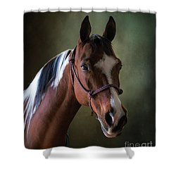 Breezie Shower Curtain by Jim  Hatch