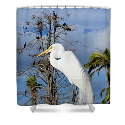 Breezy Egret Shower Curtain