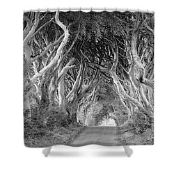 Bregagh Road Shower Curtain