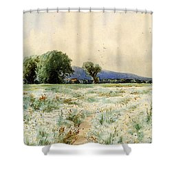 Bricher Alfred Thompson The Daisy Field Shower Curtain