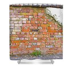Brick And Mortar Shower Curtain