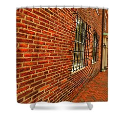 Brick Houses Shower Curtain
