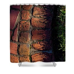 Brick Path In Afternoon Light Shower Curtain