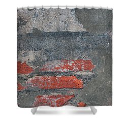 Shower Curtain featuring the photograph Bricks And Mortar by Elena Elisseeva
