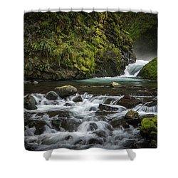 Bridal Veil Creek Shower Curtain by Joe Hudspeth