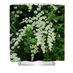 Bridal Wreath Shower Curtain