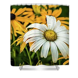 Shower Curtain featuring the photograph Bride And Bridesmaids by Bill Pevlor