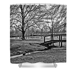 Shower Curtain featuring the photograph Bridge And Branches by Greg Jackson