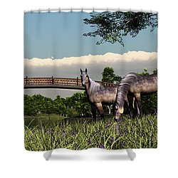 Bridge And Two Horses Shower Curtain by Walter Colvin