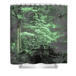 Bridge At Clark Gardens Shower Curtain