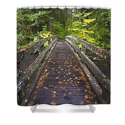 Bridge In A Park Shower Curtain by Craig Tuttle