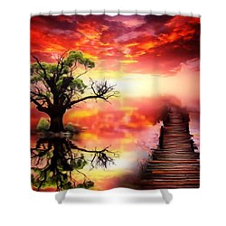 Bridge Into The Unknown Shower Curtain by Gabriella Weninger - David