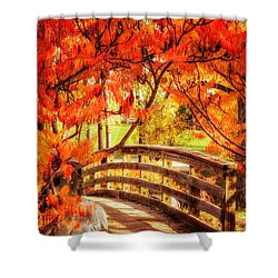 Bridge Of Fall Shower Curtain