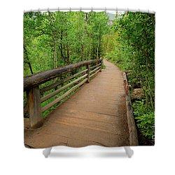 Bridge On Alberta Falls Trail Shower Curtain
