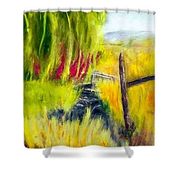 Bridge Over Small Stream Shower Curtain by Sherril Porter