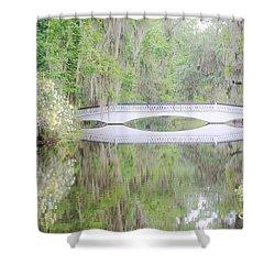 Bridge Over1 Shower Curtain