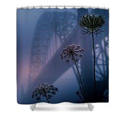 Bridge Scape Shower Curtain