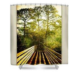 Shower Curtain featuring the photograph Bridge Shadows by Linda Olsen