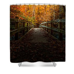 Bridge To Enlightenment Shower Curtain by Ed Clark
