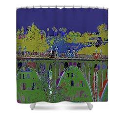 Bridge To Life Shower Curtain