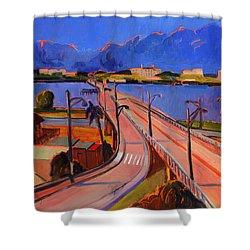 Bridge To Palm Beach Shower Curtain