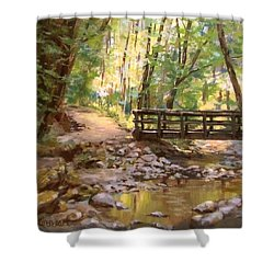Bridge To The Falls Shower Curtain