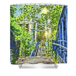 Shower Curtain featuring the photograph Bridge To Your Dreams by LemonArt Photography