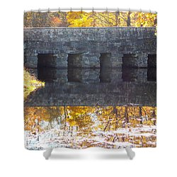 Bridges Reflection Shower Curtain