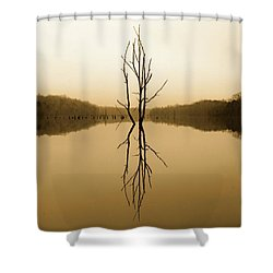 Briery Creek  Shower Curtain