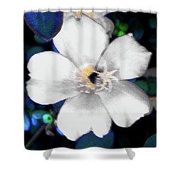 Bright Blue Accents White Vinca Shower Curtain