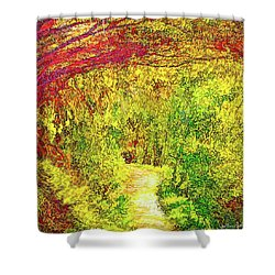 Bright Afternoon Pathway - Trail In Santa Monica Mountains Shower Curtain