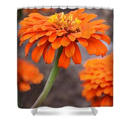 Bright And Beautiful Shower Curtain by Kathy M Krause