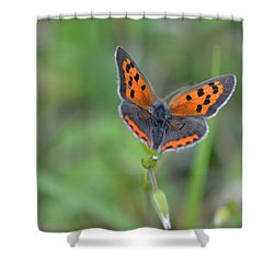 Bright Copper Shower Curtain
