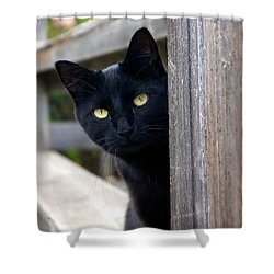 Bright Eyed Kitty Shower Curtain