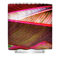 Bright Leaves 548 Shower Curtain