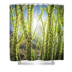 Shower Curtain featuring the photograph Bright Light In The Desert by T Brian Jones