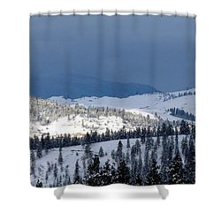 Shower Curtain featuring the photograph Bright Patch Of Sunshine by Will Borden
