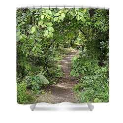 Bright Path In Leafy Forest Shower Curtain