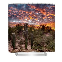 Bright Spot Shower Curtain