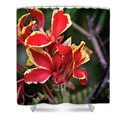 Shower Curtain featuring the photograph Bright Spot In My Day by Mary Machare