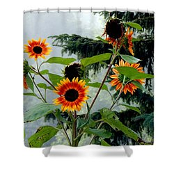 Bright Spots On A Foggy Morning Shower Curtain