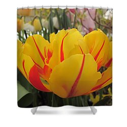 Bright Tulip Shower Curtain by MTBobbins Photography