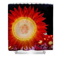 Brighter Than The Sun Flower Shower Curtain