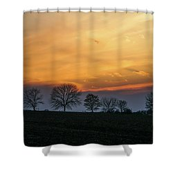 Brilliant Canopy Shower Curtain
