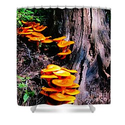 Brilliant Orange Shower Curtain