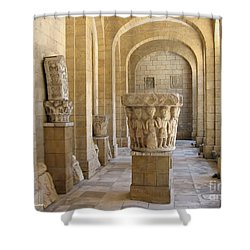 Brindisi Library- Biblioteca De Leo Shower Curtain