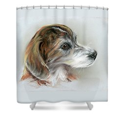 Shower Curtain featuring the pastel Brindle Beagle Mix Portrait by MM Anderson
