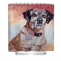 Brindle Shower Curtain