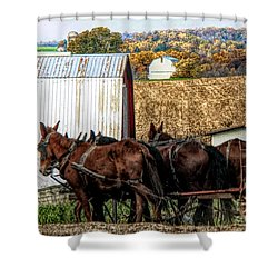 Bringing It Home In Lancaster County, Pennsylvania Shower Curtain