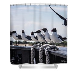 Bringing Up The Rear Shower Curtain